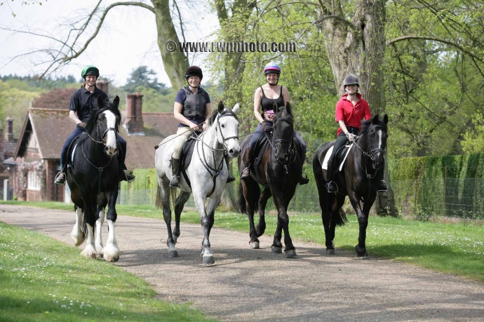 Sandringham Charity Horse Ride - 08.05.16