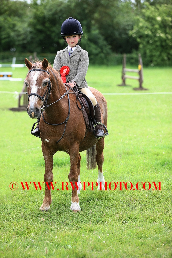 Essex & Suffolk P.C. Show, Shelley Hall - 28.05.17