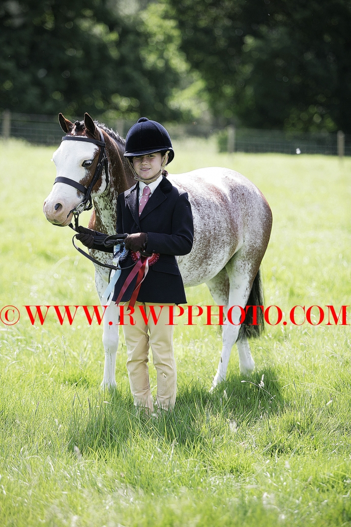 The Lavenham & District Equestrian Club Show, Melford Hall - 04.06.17