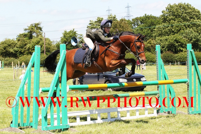 Easton Harriers P.C. Annual Show, Westerfield - 10.06.17