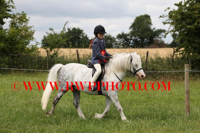 Westerfield Horse Show - 24.06.17