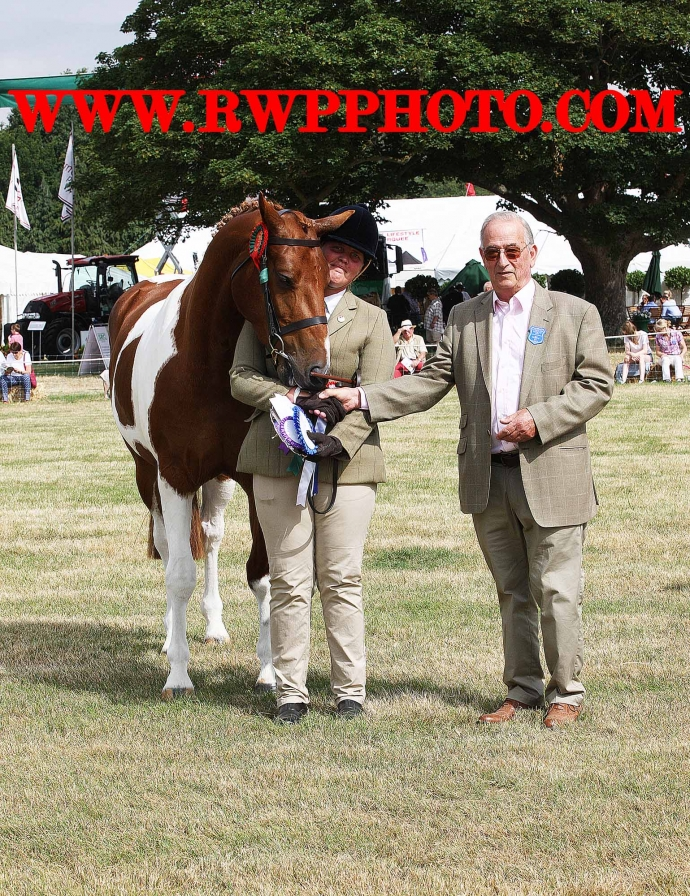 The Tendring Show 2017