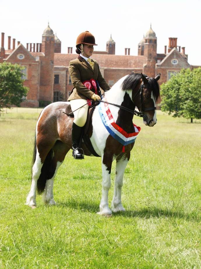 Lavenham & District E.C. Show, Melford Hall Park - 10.06.18