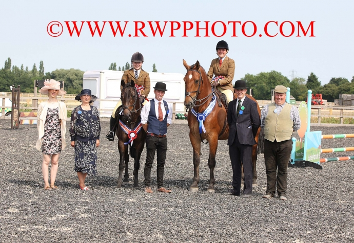 Court Lees Bloodhounds WH & Hunter Show, Barleylands - 01.07.18