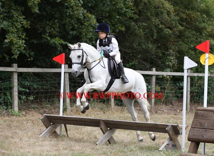 Essex & Suffolk P.C. Junior & Novice One Day Event, Shelley - 10.08.18
