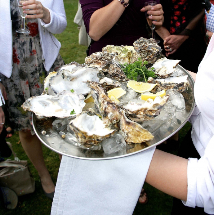 Reception - Oysters